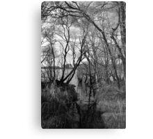 Creepy Woods Metal Print