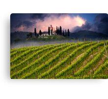 Vineyard hill Canvas Print