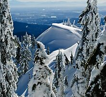 Snowy Peak to the City Below by Michael Garson