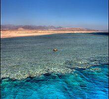 Coral Reef, Sharm El Sheikh by Michael Upshon