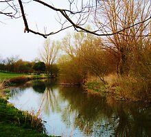 Grantchester Meadows 11 by artfulvistas