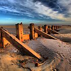 Groynes at Spurn Point by SteveBB