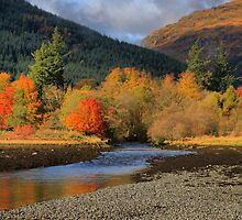 Autumn at Arrochan by SteveBB