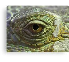 Eye to Scale Canvas Print