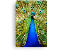 The Poser Canvas Print