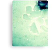 03-28-11: Dirty Ice Cubes In Sink Canvas Print