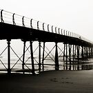 Saltburn Pier in the mist by SteveBB