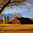 The Barn by Donna Anglin Husband
