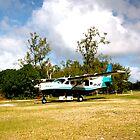 Caravan parked on Lady Elliot Island  by AmyLee2694