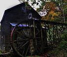 Bush Mill, Virginia by lynell