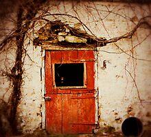 The Red Door by jenndiguglielmo