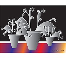 Another Pot of Flowers Photographic Print