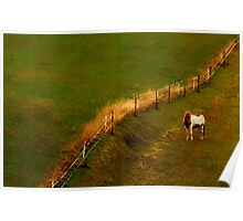 The Fence... Poster