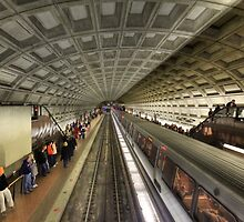 The Metro by Lori Deiter