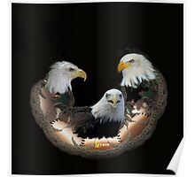 Majestic Eagles Poster