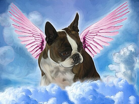 My Angel Princess Amby  by Cazzie Cathcart