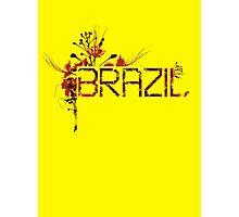 Flowering Brazil Photographic Print