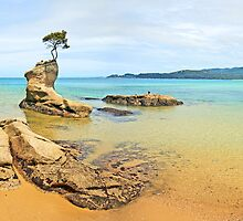 Abel Tasman New Zealand - 2011 by Steven  Sandner