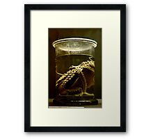 Regeneration / Bio3 Framed Print