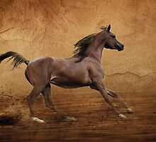 Running arabian horse by Julia Shepeleva