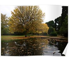 The Salmon ponds Tasmania Poster