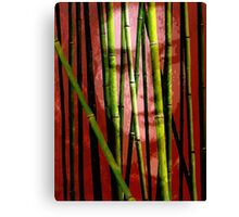 Behind the Bamboo Canvas Print