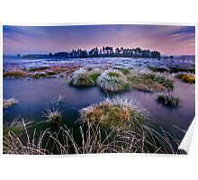 Thursley Common at sunset in winter Poster