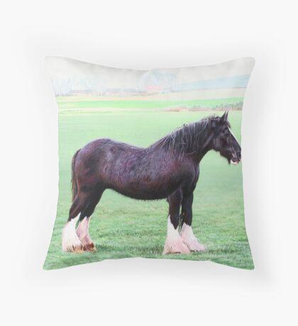 Marshall Meadows Farm Shire Horse - Blossom Throw Pillow