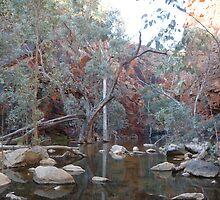 Eerie - Glen Ormiston Gorge by Vicki73