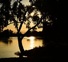 Sunset on Wimmera River by Vicki73