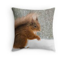 Cheeky Red Squirrel Throw Pillow