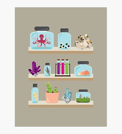 Witchy Shelves Photographic Print