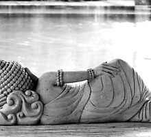 Basking Buddha by MadMoose