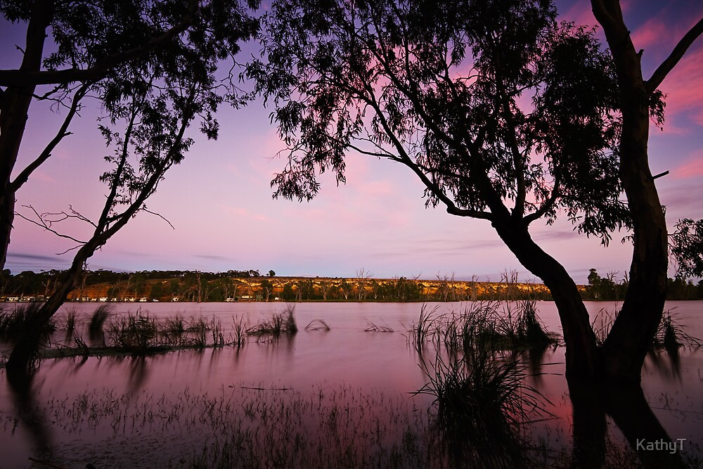 First Light on the River by KathyT