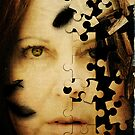 The Pieces of Me by Sybille Sterk