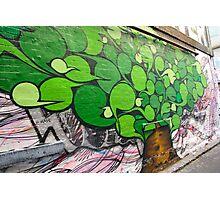 Alley Tree Photographic Print