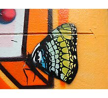 Butterfly Works Photographic Print