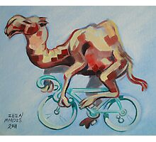 Camel on a Bicycle Photographic Print