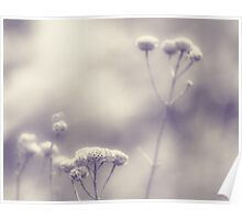 Memories - Lou Campbell Nature Preserve Poster
