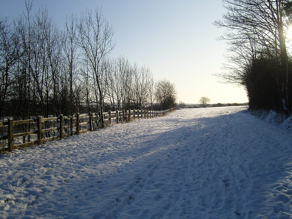 Hertfordshire Snow scene by puddingpiesjb