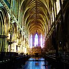 Lichfield Cathedral 1 by artfulvistas