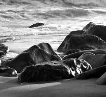 Malibu Beach at Sunset by William Fehr