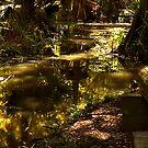 Louisiana Swamp by HeavenlyCanvas