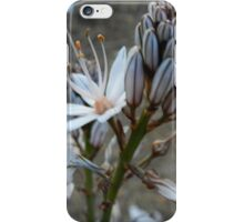 Blooms and Buds iPhone Case/Skin