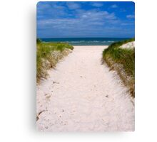 Walkway to the sea  Canvas Print