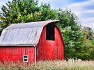 An afternoon in the country  by lynell