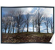 Trees Awaiting Springtime Poster