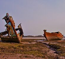 Marsh Wrecks by Peter Stone
