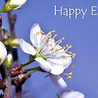 Damson Blossom: Easter Card by Steve
