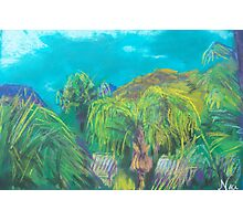 Tropicale (pastel) Photographic Print